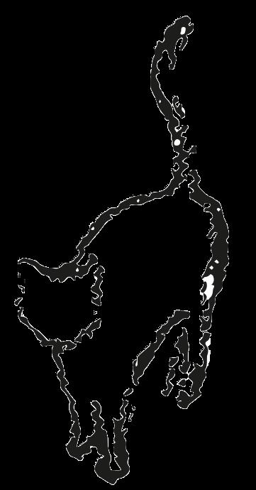 Kathomecare image logo trasparent.png 3